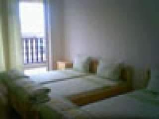 Къща за гости Арапя - снимка 2