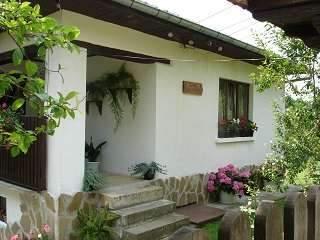 Къща Костови - Елена