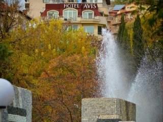 Хотел Авис - снимка 1