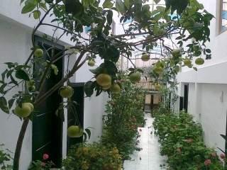 Хотелски комплекс Белведере - снимка 4