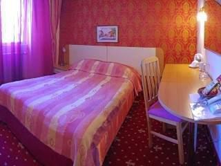 Хотел Балкан - снимка 6